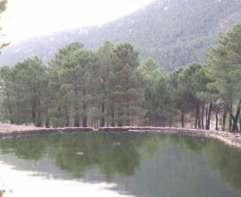 Cazorla, la sierra de los tres grandes ríos